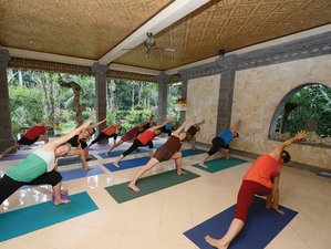 8 Days Iyengar Yoga Retreat in Bali