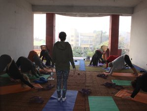 28 Days Ayurveda Yoga Retreat India