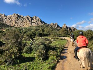 7 Days Intensive Horse Riding adventures in a Nature Park, Andalusia, Spain
