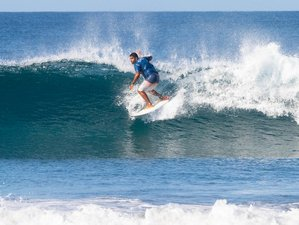 8 Day Backpacker's Special Surf Camp in Nosara, Guanacaste
