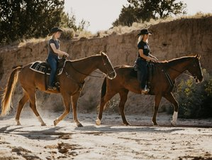 5 Day Unforgettable Rescue Horse Ranch Vacation in Santa Fe, New Mexico