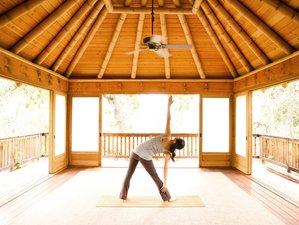 6 días de meditación y retiro de yoga Vinyasa y Yin en Scotts Valley, EUA