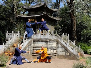 1 Year Shaolin Holistic Wellness Path Online Course
