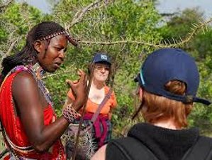 7 Days Best of Tanzania Walking & Game Drive Safari