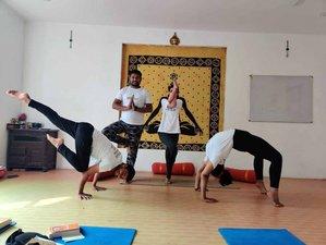 10 Day 100-Hour Online Ashtanga and Hatha Yoga Teacher Training Course