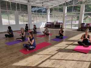 5 Days 50-Hour Yoga Teacher Training Course in Adhiroha, Rishikesh