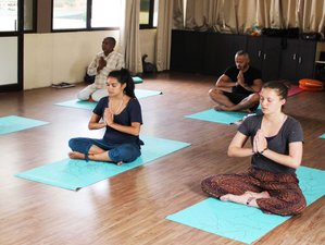 70 Days 500-Hour Hatha Yoga Teacher Training in Rishikesh, India