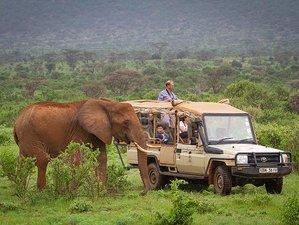 3 Days Group Budget Safari in Masai Mara National Reserve