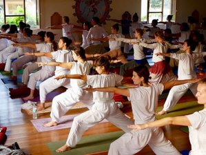 15 Tage 80-Stunden Zertifizierte Ashtanga Vinyasa Yogalehrer Ausbildung im Ashram in Rishikesh