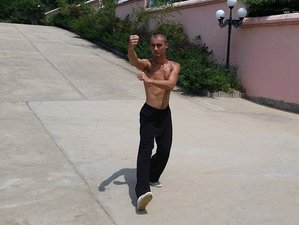 4 Years Learning Martial Arts in China Kungfu Academy