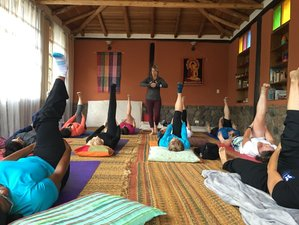 8 Tage Abenteuer Yoga Retreat in Patagonien, Chile
