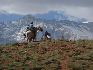 9 Day The Andes Crossing Horse Riding Holiday from Chile to Argentina