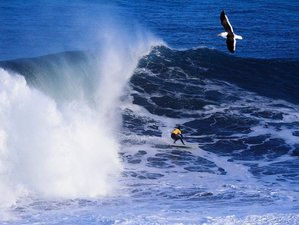7 Days Exciting Surf Camp Pichilemu, Chile