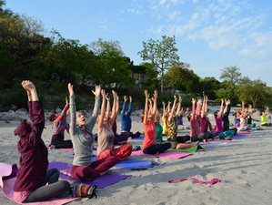 14 Days 100-Hour Meditation and Yoga Teacher Training in India