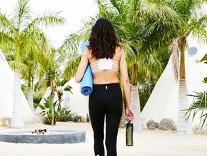 6 Day Desert Sea Dreams Yoga Retreat with Sara Hess and Matt Champoux in Todos Santos