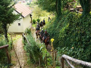 4 Day Horseback Riding Holiday in the Beautiful Countryside in Ribnjačka, Bjelovar
