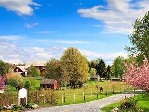 8 Day Yoga Retreat at Countryside Farm in Hershey, Pennsylvania