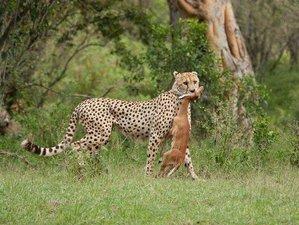 5 Days 4 Nights Lake Nakuru-Lake Naivasha-Masai Mara