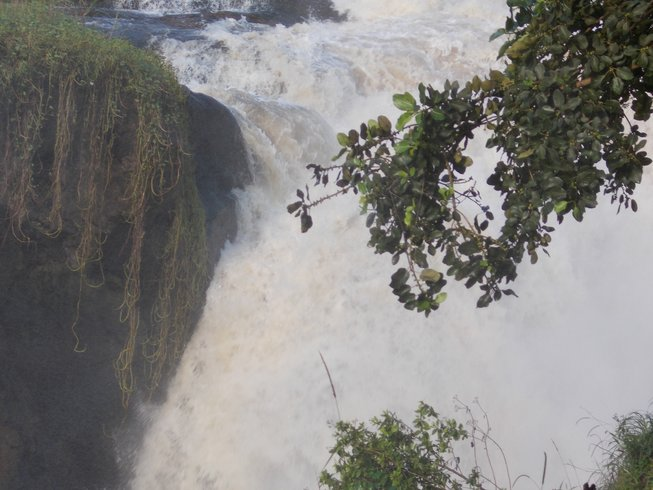 3 Days Murchison Falls Safari in Uganda