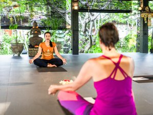 8 Day Stress Release Retreat with Ayurvedic Treatments, Meditation, and Yoga in Buleleng, Bali