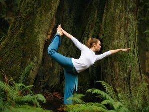 4 Days Rainforest Escape Yoga Retreat in La Fortuna, Costa Rica