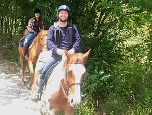 6 Day Roman Chariot Trail and Horse Riding Holiday in Spoleto, Umbria