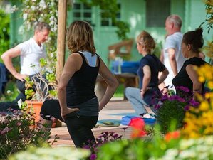 7 Days New Year Yoga Retreat in Spain