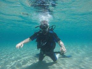 8 Tage Tauchen Lernen, Yoga und Koch Urlaub auf Zakynthos, Ionische Inseln