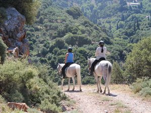 8 Day Fun Week Kids Horse Riding Holiday in Hersonissos, Crete