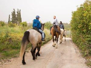 4 Day Hills and Sea Horseback Riding for All Levels in Pyrgiotika, Nafplion
