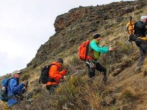 10 Days Climbing Safari Kilimanjaro, Tanzania