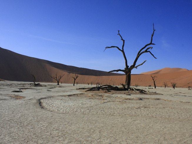 14 Days Self-Drive Safari in Namibia
