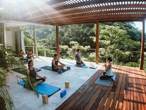 8 Day Burnout Recovery: Yoga Retreat in Puerto Vallarta