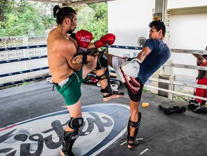 1 Week BJJ Training and Muay Thai Camp in Chiang Mai