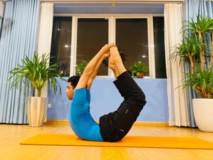 3 Month 500-Hour Advanced Multi-Style Online Yoga Teacher Training
