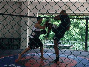 2 Weeks Muay Thai and MMA Training in Thailand