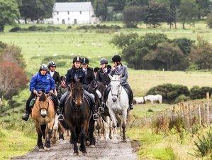 2 Days North Coast Adventure Horse Riding Holiday in Northern Ireland, UK