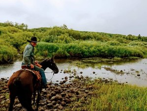 7 Day Economy Week Horse Riding and Ranch Vacation in Rossburn, Manitoba