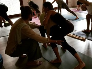 21 Day Art of Adjustment Yoga Course in Phuket
