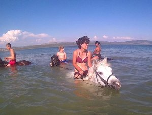 2 Day Bathing with Horses Adventure to Lake Vransko Horse Riding Holiday in Biograd na Moru