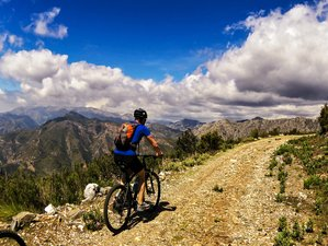 8 Day Customised Mountain Bike or Road Cycling Holiday in Costa Tropical, Granada
