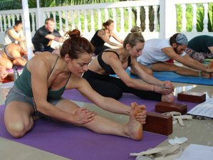 13 Days 100-Hour Yoga Teacher Training in India