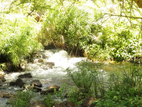 Taita-Taveta County