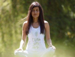 Formación de profesores de meditación en línea