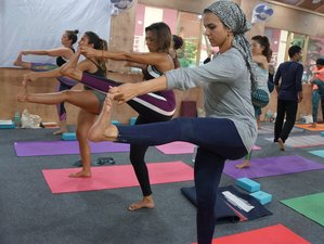 27 Days 200-Hour Scholarship Yoga Teacher Training in Rishikesh, India