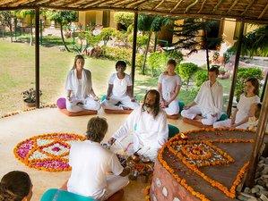 28 días 300 horas profesorado de yoga en Rishikesh, India
