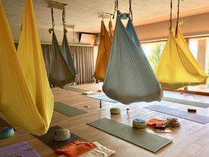 7 Days 50-Hour Aerial Yoga Teacher Training in Millstatt, Austria