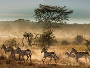 5 Days Intriguing Camping Safari in Tanzania