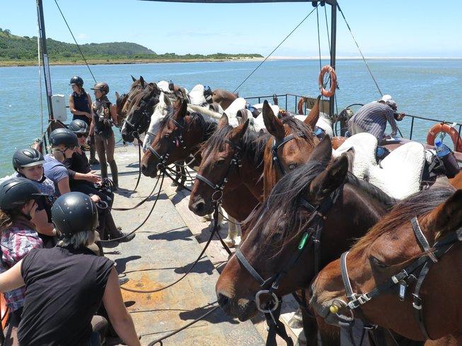 8 Days Horse Safari on the Wild Coast, South Africa