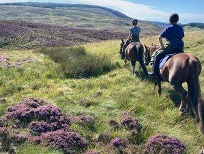 3 Day Weekend Getaways Trail Blazing Through Scotland's Hidden Coast Horse Riding Holiday in Kintyre